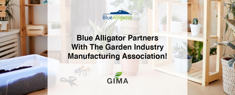 Blue Alligator partner with GIMA